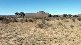 991 sq/m Plot/Erf (serviced) For sale in Noupoort Northern Cape.