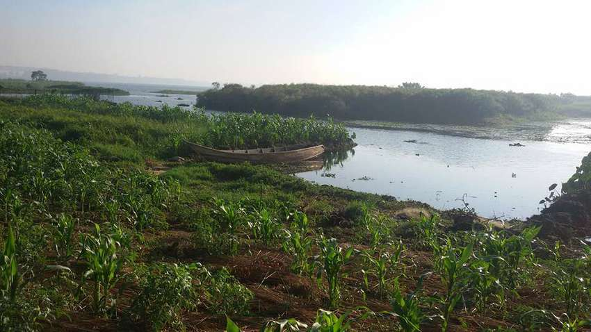 Secure 3 acres of land on shores lake victoria Entebbe each at 320m 0