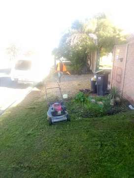 Grass cutting and mowing