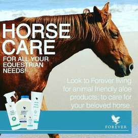 Vet Products, Pet Products, Animals Supplements