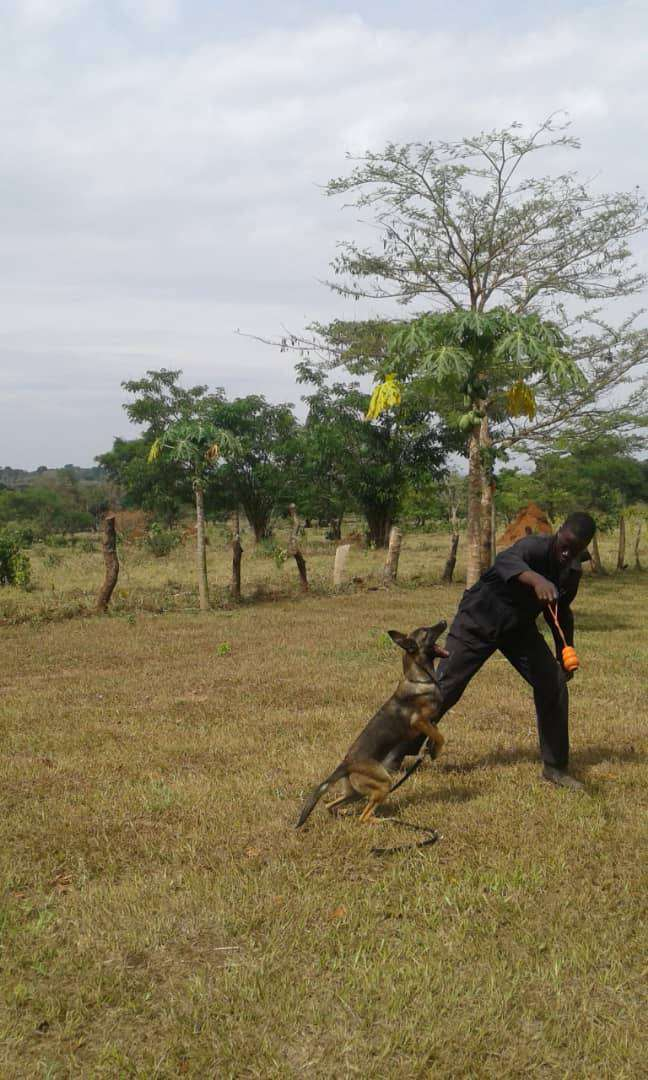 Vaccination and Deworming VET. SERVICE 0
