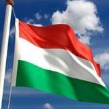 Переводчики, носители венгерского языка