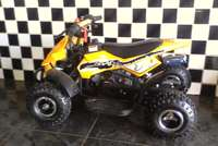 Image of Mini banshee 50cc