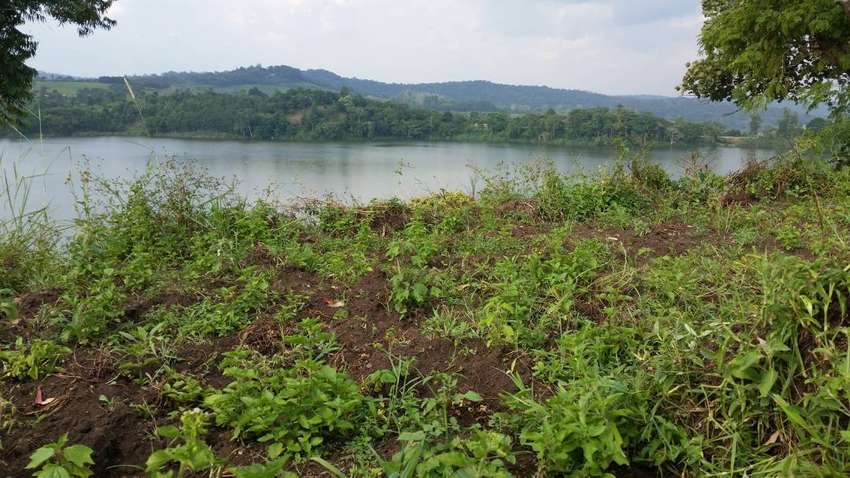 11 acres of Titled lakeside land for sale in Fort Portal. 0