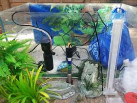 2 Feet fish tank for sale almost brand new!