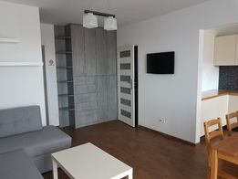 mieszkanie do wynajęcia 30 m2 cena 1000 zł