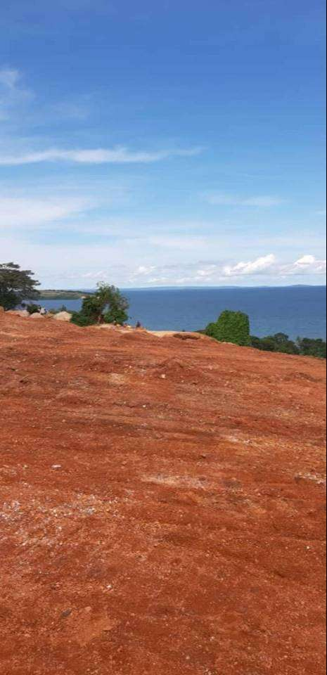 2.5 acres of private mailo Land on sale Asking price #1bn ugx Kasenyi 0