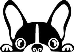 N46 - naklejka pies