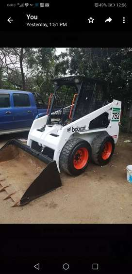 Bobcat for  sale