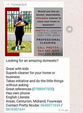 Am looking for a domestic work