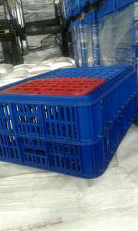 Image of Poultry transport crate