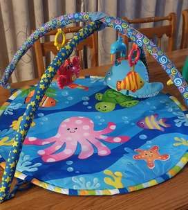 Baby Play Mat/Gym
