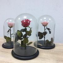 Роза в стеклянной колбе (КОРОБКА,ГРАВИРОВКА )ХИТ ПРОДАЖ.
