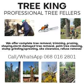 TREE CUTTING SERVICES PROVIDERS