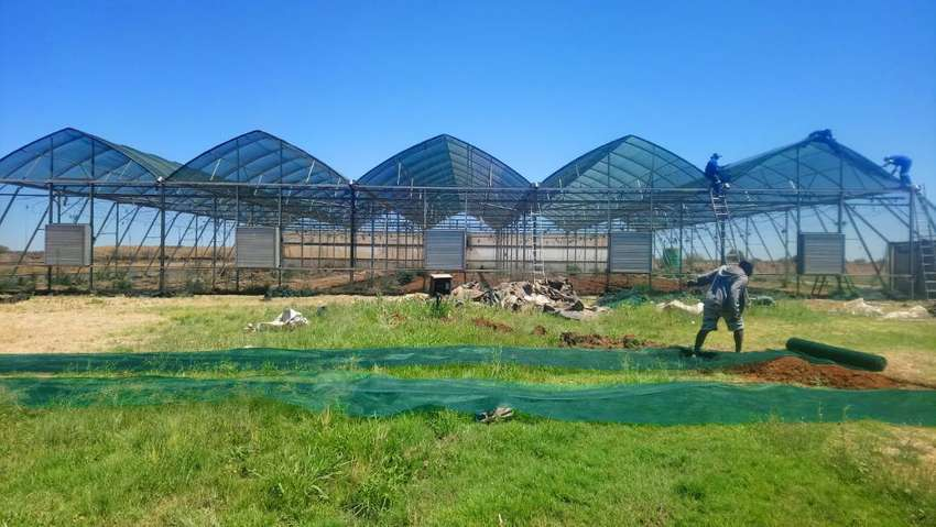Greenhouse tunnel, Hydroponic tunnel, Irrigation system