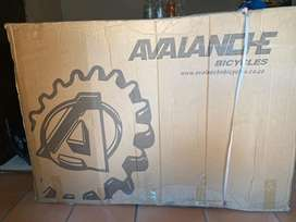 Avalanche spinit
