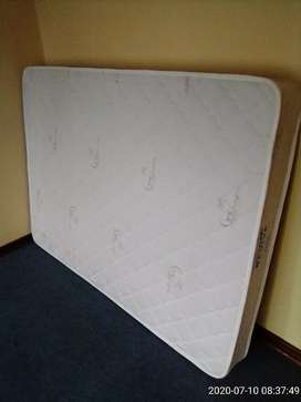 Brand new Revive Essentia Double do not turn Matress