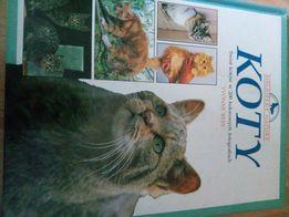 Album o kotach