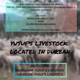 QUALITY LIVESTOCK AVAILABLE