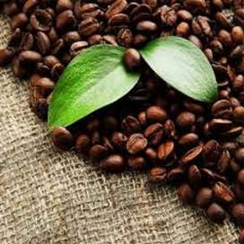 Coffee roastery in east of Pretoria for sale!