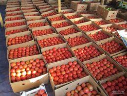 Доставка овощей и фруктов Полтава