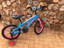 Raleigh Enduro 16 inch kids bicycle