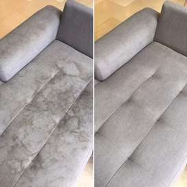 Professional couch deep cleaning