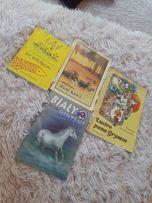 Książki dla dzieci zew krwi Lustro Pana Grymsa Biały Mustang my wróbel