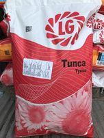 Limagrain Лимагрейн - Семена подсолнечника Tunca Тунка США.