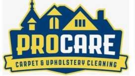 Deep/Steam Cleaning of Carpets n Upholstery-Couches/Rugs/Chairs/Blinds
