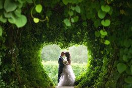 Свадебный и семейный фотограф на свадьбу. Фото. Видео. Корпоратив