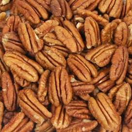 Shelled Pecan Nuts at Wholesale Prices