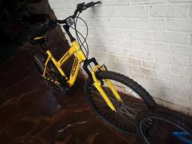 I'm selling a Raleigh size 26 its yellow