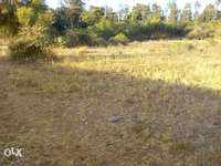 40x80 Plots for sale juja 0