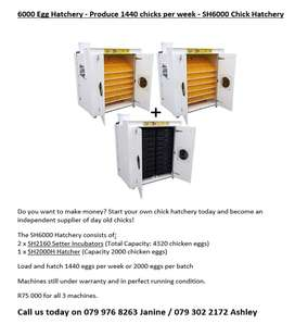 Surehatch Hatchery for sale- become your own boss in a growing market