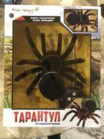 Паук тарантул на управлении. 550 грн. Дарим подарки!Скину видео viber!