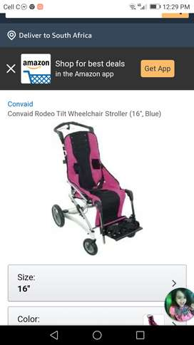 Special Needs Wheelchair