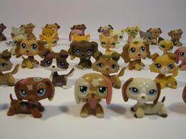 Littlest Pet Shop - PSY I KOTY UNIKATY - 120 sztuk