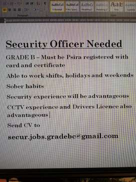 Security officer needed