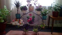 Новая подставка для цветов