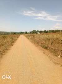 50x100ft plot of Land for sale in gayaza at 12m 0