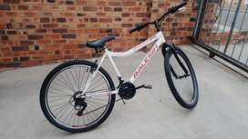Raleigh 26inch for sale