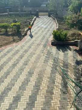 Paving quality bricks and reasonable quote