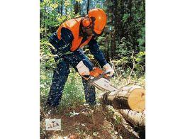 Срезание проблемных аварийных деревьев