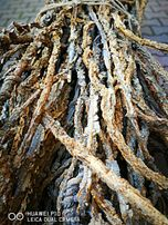 Liany, gałązki do terrarium 160-190 cm AlleTerra