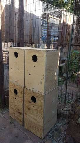 Plywood breeding boxes for IRN