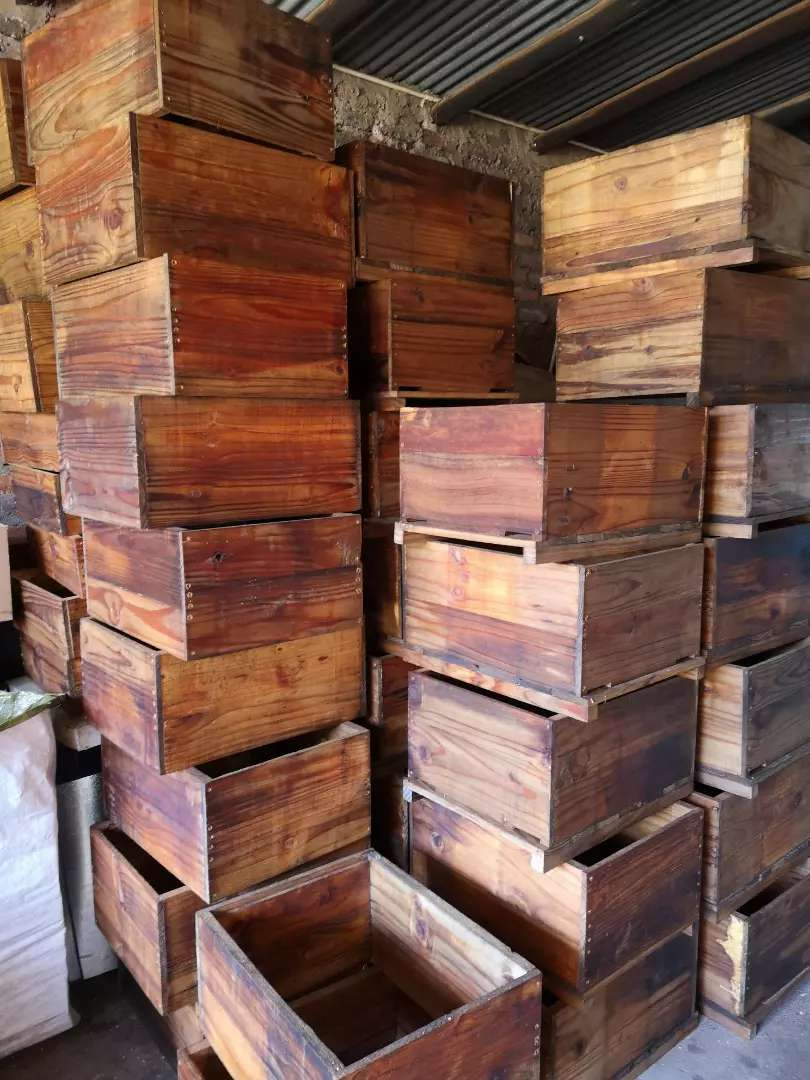 Bee hives + supers for sale 0
