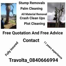 Tree felling company