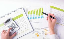 Бизнес-план, стратегические планы развития или реорганизации.