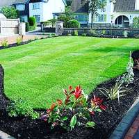 Image of Exceptional quality instant lawn, delivery, terrain prep, installation